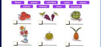Dialogue au marché, les fruits et légumes