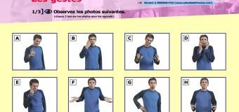 Les gestes des Français (ressource TBI/TNI + activités)